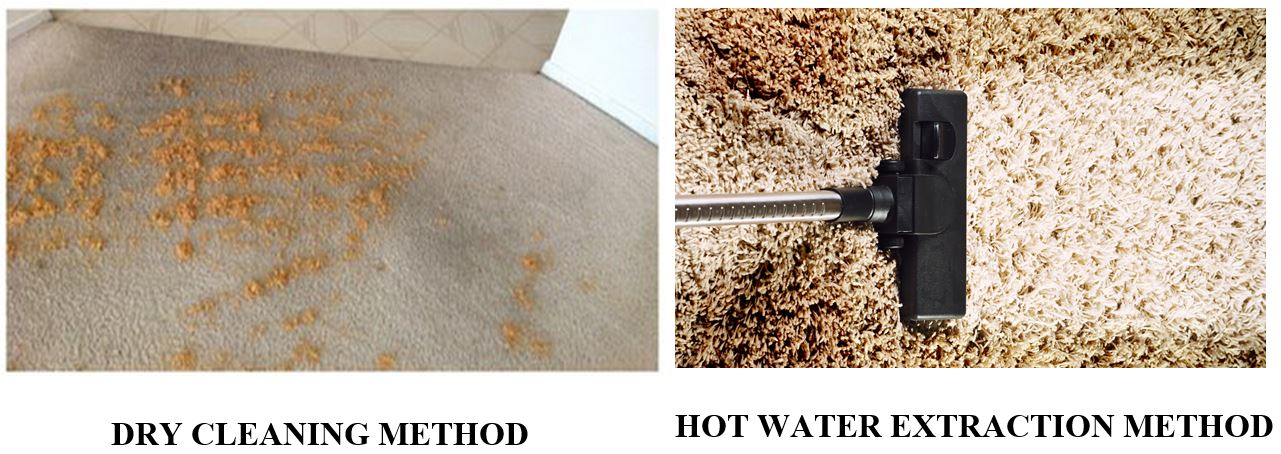Wet Vs Dry Carpet Cleaning The Dirty Truth Cbc Cleaning