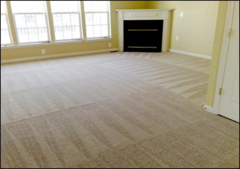 Professional Truck-mounted, Hot Water Extraction Carpet Cleaning